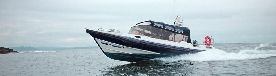 Volvo Ocean Race Water Taxi